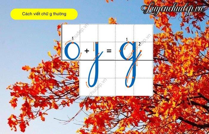 Cách viết chữ g thường cỡ chữ 1 ô li