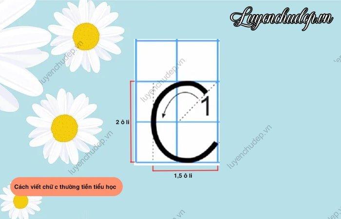 Cách viết chữ C hoa tiền tiểu học