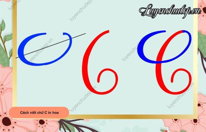 Chữ C in hoa chuẩn 2,5 ô li