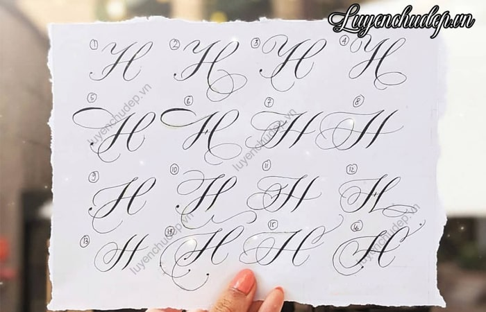 Sưu tầm cách viết chữ H hoa sáng tạo