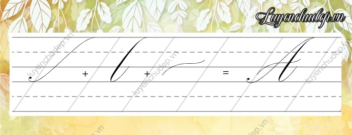 Cách viết chữ A Hoa Calligraphy Copperplate